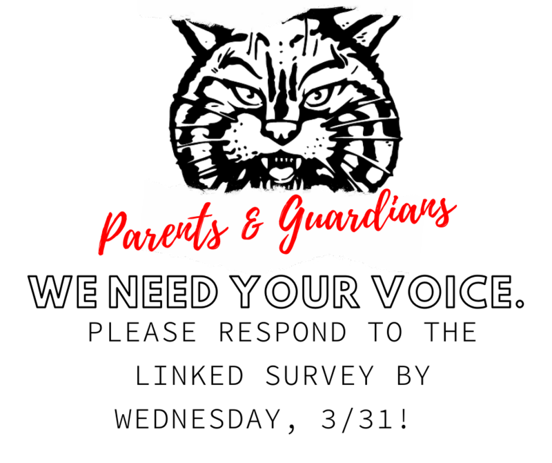 Virtual Option Parent Survey